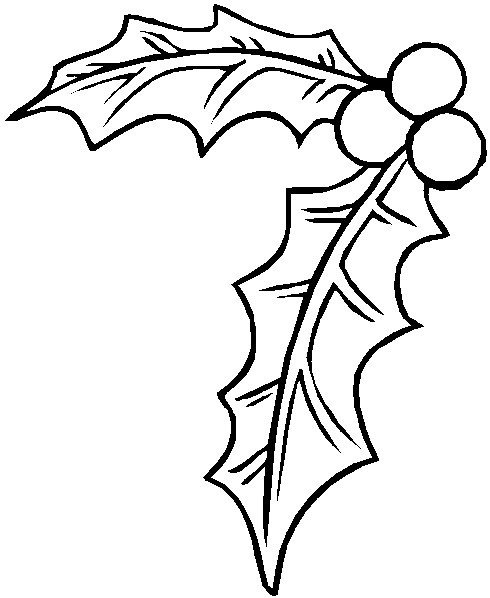 Colouring Pages Christmas Holly : Christmas Holly Coloring Pages Holly coloring index.